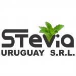Logo Stevia Uruguay catálogo